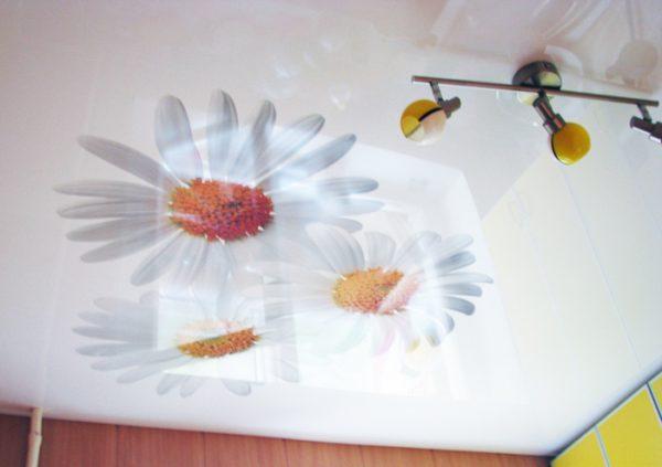 фотопечать цветов